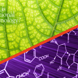 Nutritional Immunology